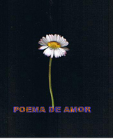 poema de amor copyright nel amaro courtesy from the artist to klauss van damme all rights reserved